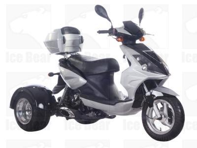 Ice Bear MOJO PST50-8 Trike Scooter-591