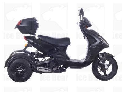 Ice Bear MOJO PST50-8 Trike Scooter-617