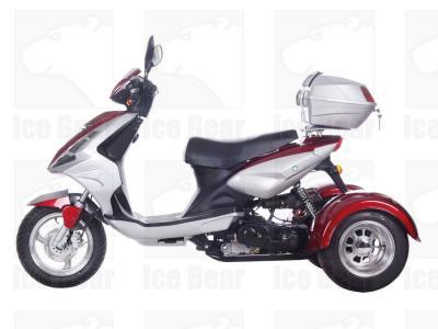 Ice Bear MOJO PST50-8 Trike Scooter-619
