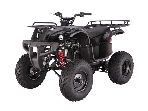 Tao Tao Bull150 ATV Black