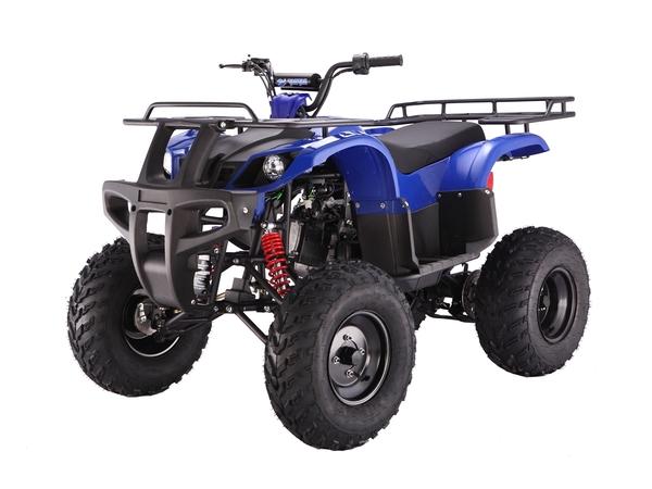 Tao Tao Bull150 ATV Blue