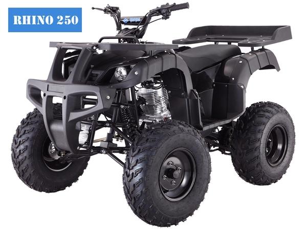 Tao Tao Rhino 250 Black