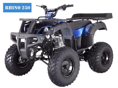 Tao Tao Rhino 250 Blue