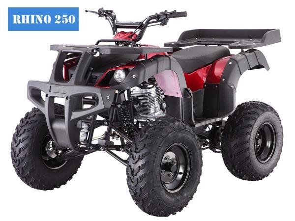 Tao Tao Rhino 250 Red