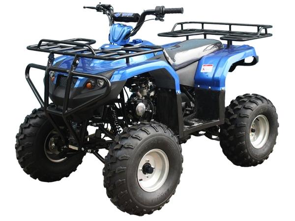 Tao Tao ATA125F1 ATV Blue