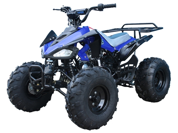 Tao Tao Cheetah ATV Blue